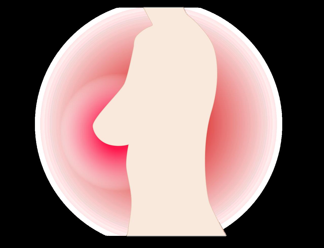 女性の乳房を象徴する画像